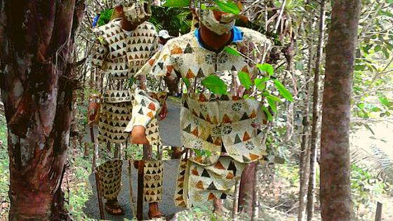 cocua-panama